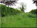 TF7220 : Public footpath to the village of Gayton by Evelyn Simak