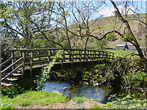 NY2101 : Footbridge, River Esk by Michael Graham