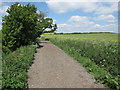 TL6353 : Byway to Willingham Green by Hugh Venables