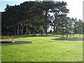 NZ2615 : Bushel Hill Park, Mowden, Darlington by peter robinson