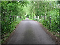 TR0047 : The bridge over Eastwell Lake by David Anstiss