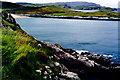 C0835 : Ards Forest Peninsula - Walk along southern shore by Joseph Mischyshyn