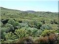 NR7872 : Moorland above Ormsary by Patrick Mackie