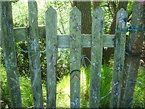 SK2563 : Painted Gate, by Endcliffe Quarry by Peter Barr