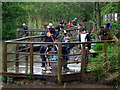 SM9202 : Pond dipping at Pwllcrochan by ceridwen