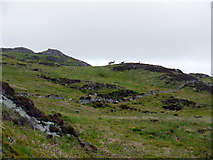 NR4865 : Ruined wall south-west of Brat-Bheinn by Andrew Curtis