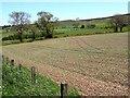 NU0716 : Field near Crawley Farm by Oliver Dixon