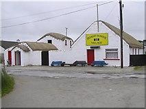 C4251 : Doagh Famine Village (1) by Kenneth  Allen