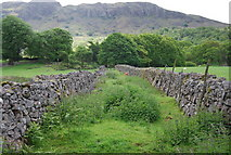 NY1700 : Abandoned railway line, Eskdale by N Chadwick