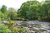 NY1700 : The River Esk near Boot by N Chadwick
