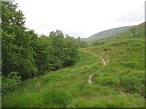 NN2868 : Glen Nevis - Corrour path by Richard Webb