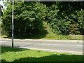 SK5636 : Informal footpath by Alan Murray-Rust