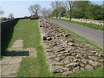 NY5764 : Hadrian's Wall and Turret 52a (Banks East) by Mike Quinn