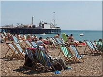 TQ3103 : Deckchairs and sunbathers on a sunny Sunday, Brighton beach by David Hawgood