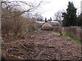 TL4556 : Cleared allotment plot by Sandy B