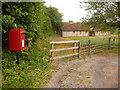 SY7896 : Dewlish: postbox № DT2 151, Milborne Wood by Chris Downer