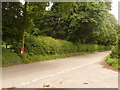 SY6493 : Muckleford: postbox № DT2 169 by Chris Downer