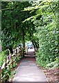 SO8577 : Footpath in Hurcott Wood, near car park by P L Chadwick