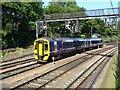 NT2473 : Train in Princes Street Gardens by kim traynor