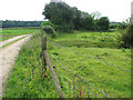 TF9803 : Stock fence separating cattle pasture from farm road by Evelyn Simak