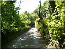 SE0424 : Rose Grove Lane by Alexander P Kapp