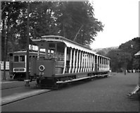 SC4384 : No 29 at Laxey MER by Dr Neil Clifton