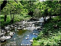SH6129 : Stream Near Crafnant by Nigel Mykura
