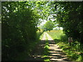 TA1051 : Track to Southfield Farm by JThomas