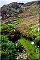 G6389 : Slievetooey Mountains - Water erosion by Joseph Mischyshyn
