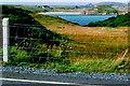 B8023 : Bunbeg - Field & Gweedore Bay by Joseph Mischyshyn