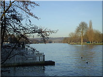 SU7682 : River Thames from Thames Side, Henley on Thames by nick macneill