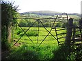 NY2436 : Field with a quirky gate by Rose and Trev Clough