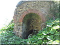 NZ4445 : Abandoned limekiln by peter robinson