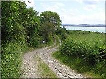 C4449 : Lane, Figart Point by Kenneth  Allen