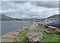 V4679 : Riverside view by Dennis Turner