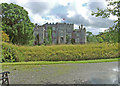 N0505 : Birr Castle by Dennis Turner