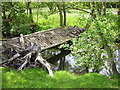 NU1516 : Dilapidated bridge over the Shipley burn by Nick Bown