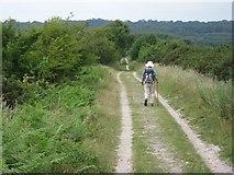 SY8086 : David Limb trail by John Palmer