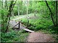 SO4713 : Small footbridge in Whitehill Wood by Jonathan Billinger