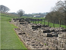 NY6366 : Hadrian's Wall east of Turret 48a (Willowford East) (2) by Mike Quinn