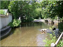 SU1734 : River Bourne, Winterbourne Dauntsey by Maigheach-gheal
