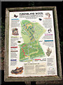 TG2603 : Poringland Wood - information board by Evelyn Simak