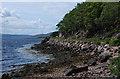 NG8857 : Loch Torridon shoreline by Nigel Brown