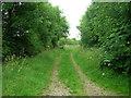 SE9857 : Track to Kirkburn by JThomas