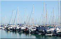 SZ3394 : Yachts moored in the marina by Andy F