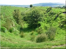 SN8511 : Cutting for the former Neath & Brecon Railway by Alan Bowring