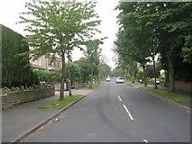 SE1421 : Armitage Avenue - Woodhouse Lane by Betty Longbottom