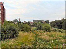 SJ9297 : An Audenshaw Footpath by Gerald England