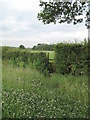SJ3561 : Stile on the Footpath to Lower Kinnerton by David Quinn