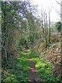 SO8280 : Public footpath descending to Kingsford Lane by P L Chadwick